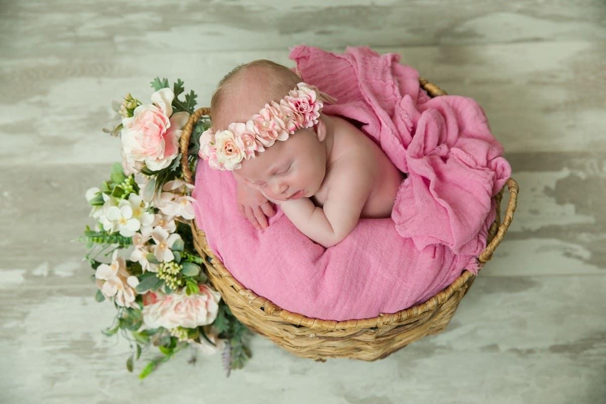 newborn_portfolio_v2_20_1